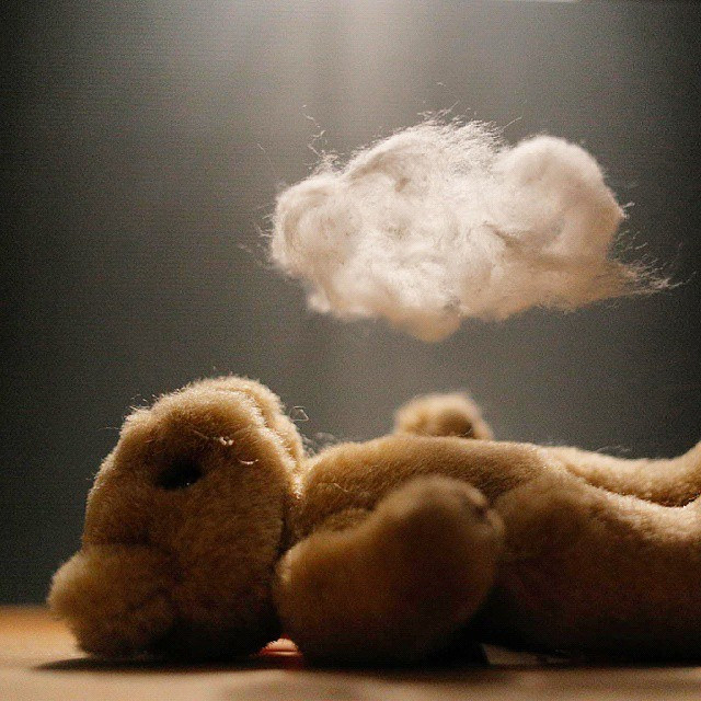 Bear with a Cloud